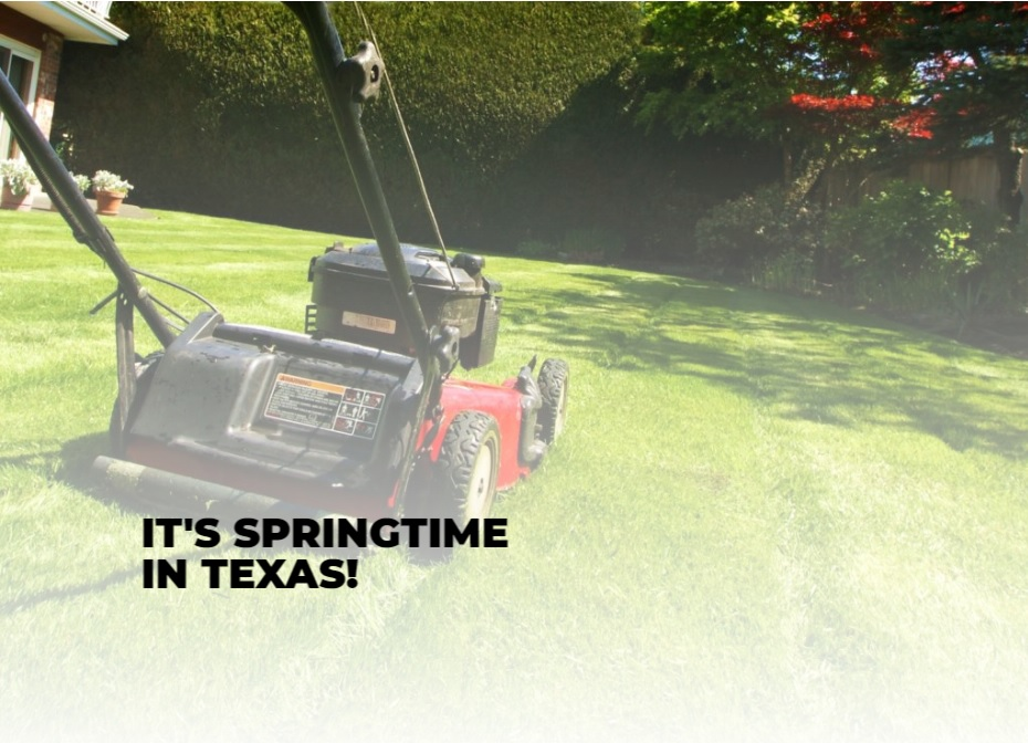 It's Springtime in Texas!